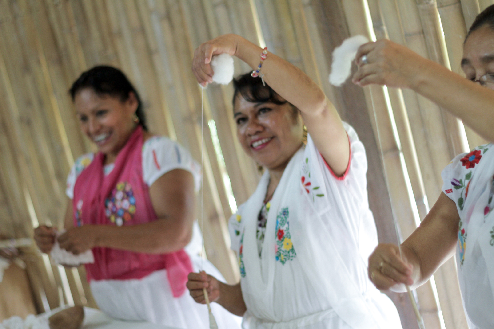 Centro de las Artes Indigenas