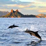 Beautiful San Carlos on the Sea of Cortez
