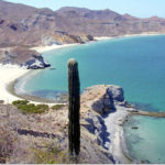 Beach in Northern Baja California